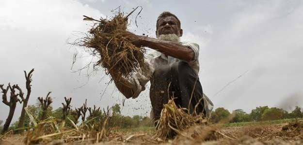 Maharashtra Agriculture Loan To Exclude Those Getting Income From Other Sources
