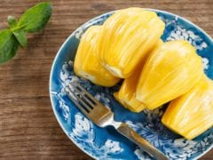 Jackfruit Recipes: Numerous Ways to Cook With This Seasonal Delight
