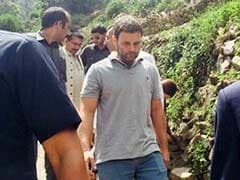 Not Chopper, Rahul Gandhi Opts for Tough Trek to Kedarnath Shrine