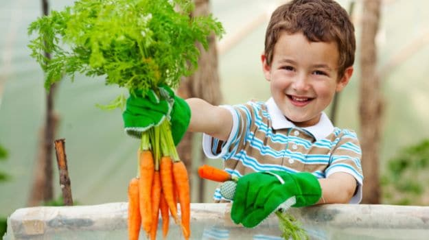 kids should grow vegetables