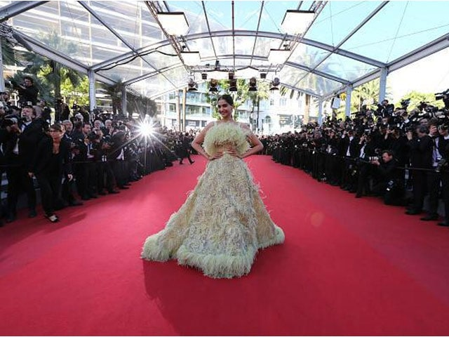 The Internet Hates Sonam Kapoor's 'Big Bird' Dress