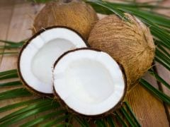 Bill To Classify Coconut As 'Palm' Tabled In Goa Assembly