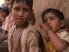 195 Million In India Still Undernourished