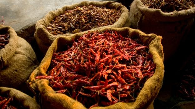 many-shades-of-red-chillies-of-india-from-sizzling-sensations-to-mild-marvels-1