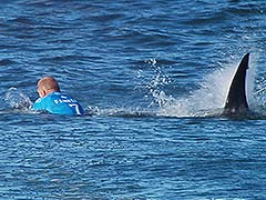 Surfer Who Battled Shark on Camera Excited to Compete Again