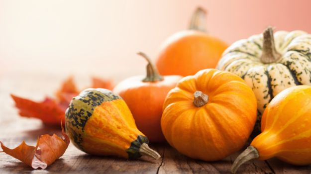 10 Most Cooked Pumpkin Recipes