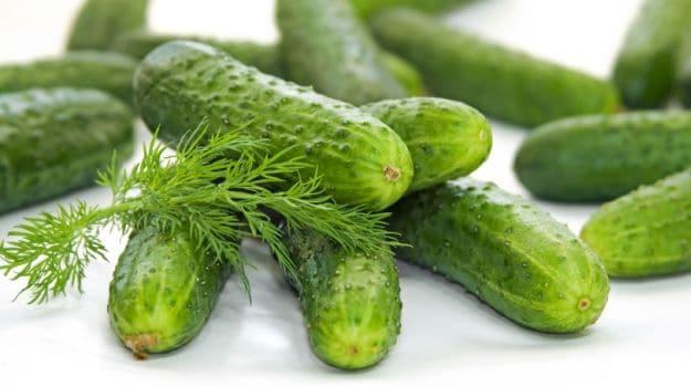 10 Best Cucumber Recipes