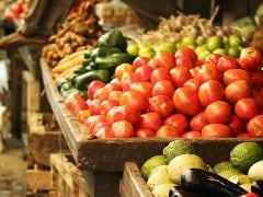 Food Processing Sector Should Focus on Nutritional Products