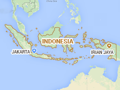 Magnitude 6.6 Quake Hits Off Indonesia's Irian Jaya: USGS