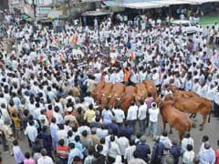 Nationalist Congress Party Protests in Maharashtra Over Marathwada Drought Issue