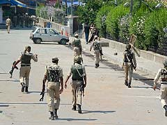 Curfew in Parts of Srinagar After Beef Ban Sparks Protests