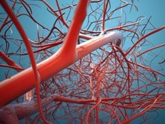 World's First 3D Blood Vessel Bio-Printer Developed