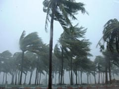 China Typhoon Kills 6, Knocks Out Power as Tornado Snaps Trees