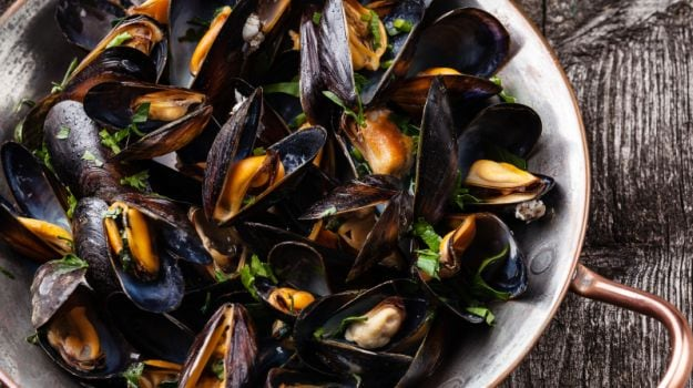 mussels 625