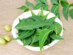 Neem for Dandruff: A Natural Remedy to Get Rid of It