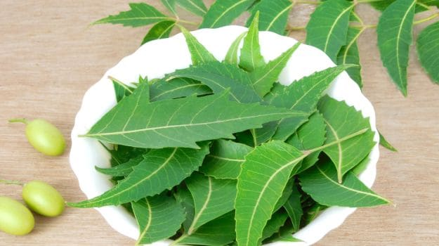 Boil Neem Leaves and Drink the Water