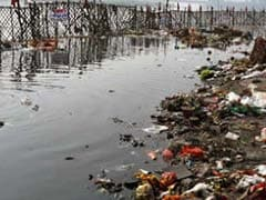 Yamuna's Pathetic Condition Angers Devotees On Ganga Dussehra