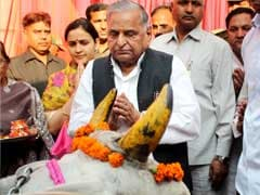Azam Khan is a Cow Lover, Says SP Chief Mulayam Singh Yadav