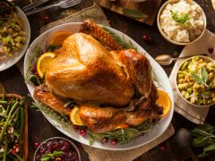 How Turkeys Got From Mayan Temples to your Thanksgiving Dinner Table