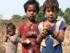 'Grass, Weeds Traditional Diet': How UP Government Covered Up NDTV Report On Hunger
