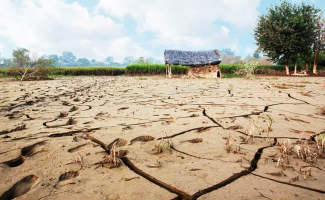 Rs 2,550 Crore Grant Approved To Drought-Hit Uttar Pradesh, Andhra, Odisha