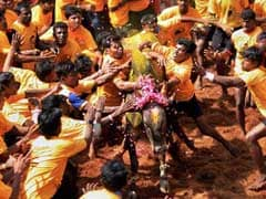 Nearly 200 Detained In Tamil Nadu's Madurai Over Jallikattu Protests