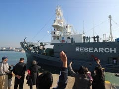 Japan Fleet Sets Sail for Antarctic Whale Hunt