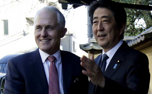 Australia 'Disappointed' At Japan Whaling: Malcolm Turnbull