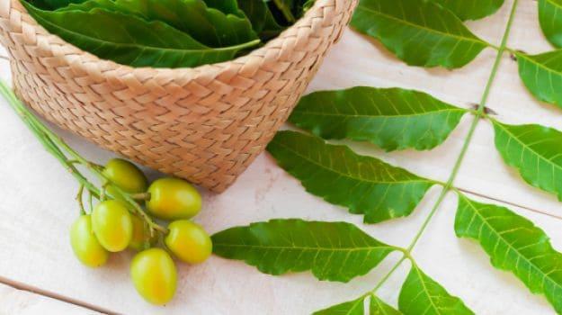 neem turmeric paste skin