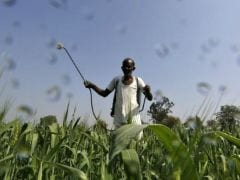 PM Modi's New Crop Insurance Scheme Reaches Out To Farmers