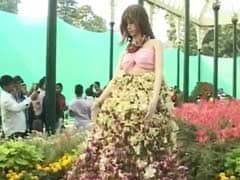 Bengaluru's Flower Lovers Keep Their Date With Lalbaugh Gardens
