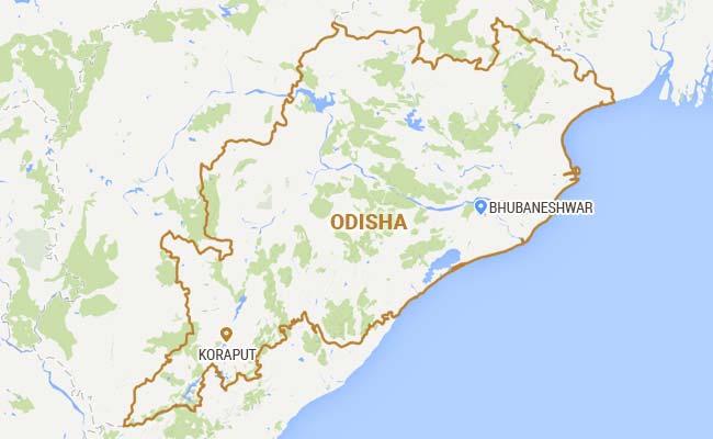 Maoists Detonate Landmine In Odisha's Koraput, Kill 2 BSF Troopers