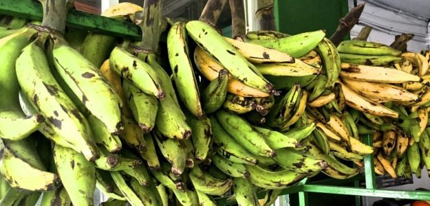 Turn Plantains Into Patacones for an Easy Latin Treat