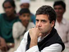 Congress Leaders Fight Over Where Rahul Gandhi Should Visit