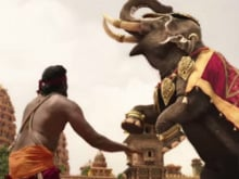Baahubali 2 Faces Trouble For Allegedly Shooting With Elephant Illegally