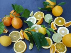 Zesty Citrus Fruits Brighten Winter Meals