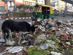 Delhi Sanitation Workers Agree To Call Off Strike In Court