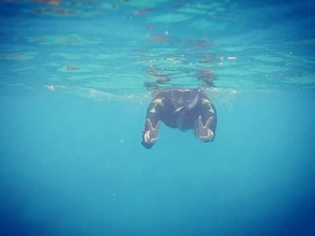 Into the Blue: See Sonakshi Sinha's Stunning Underwater Selfies