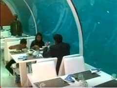 India Gets Its First Underwater Restaurant in Ahmedabad