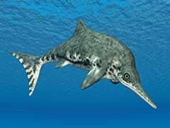 The Ichthyosaur Swam The Seas For 150 Million Years. Then The Climate Changed