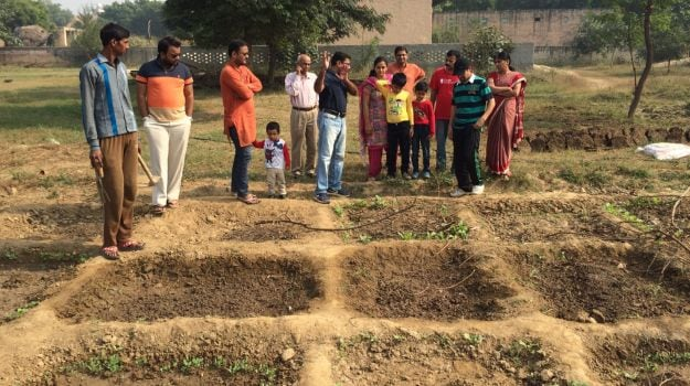 Image result for organic farming india
