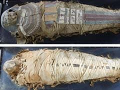 Hyderabad Scan Of 2000-Year-Old Mummy Shows Parts Of Brain Still Intact