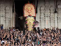 Elephants Keep Up Thrissur Pooram Tradition, Black Paint Masking Injuries