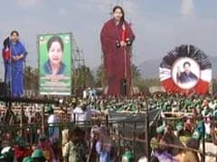 Why Are Rights Groups Silent On Deaths At Jayalalithaa's Rallies: Minister