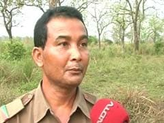 At Kaziranga, Guards Wonder If They Can Vote Through Postal Ballot