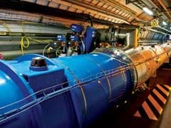 Biggest Scientific Instrument In The World Was Brought Down By A Tiny Weasel