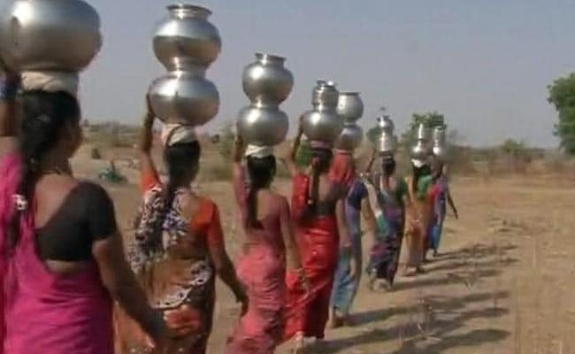 Telangana's Drought Story In One Line: These Women, Walking Single-File
