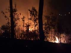 2 Dead, Alert In Uttarakhand As Raging Fires Destroy Forests