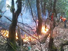 Home Minister Rajnath Singh Reviews Forest Fire Situation In Uttarakhand