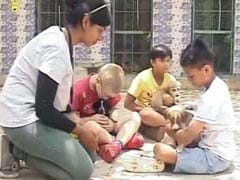 In Bengaluru, A Weekend Play Date For Children And Animals